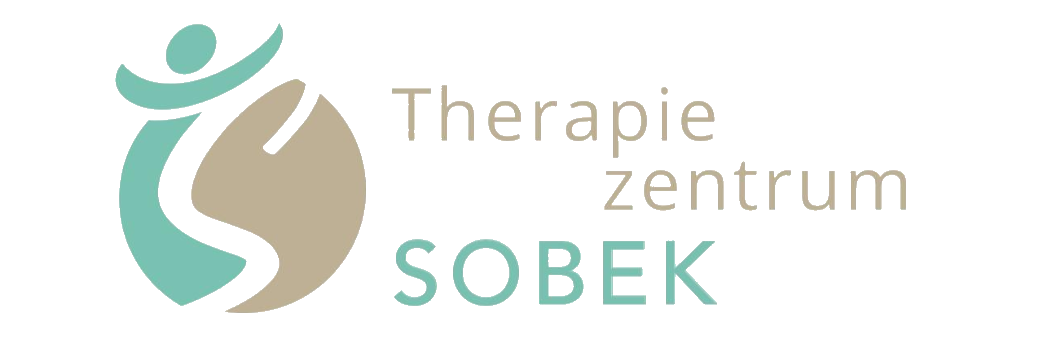 logo_banner_t